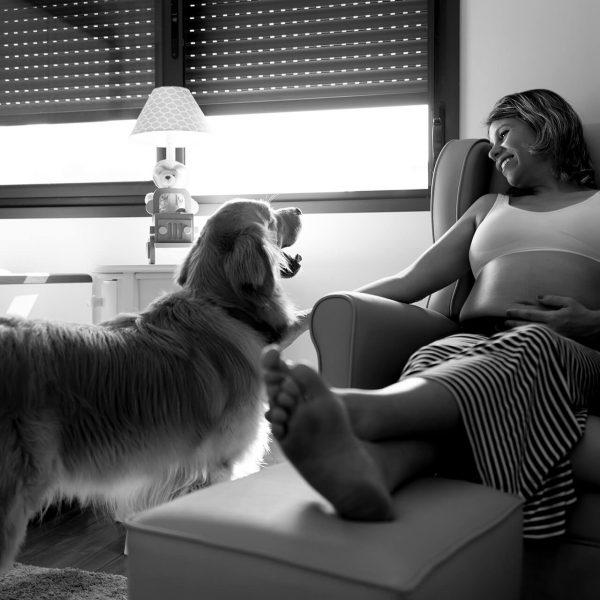 grávida de menino tirando foto com o cachorro